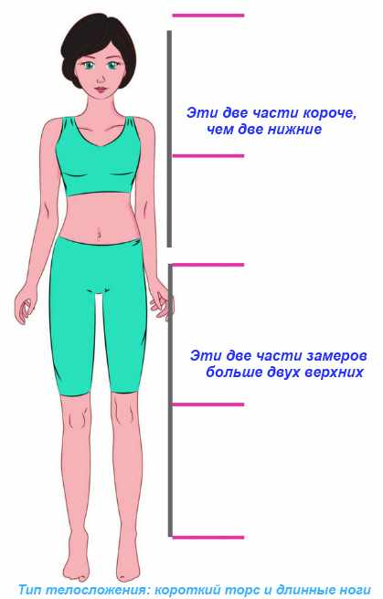 тип фигуры: короткий торс и длинные ноги