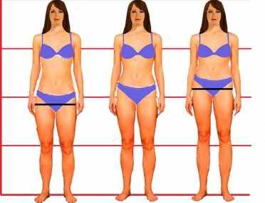разные типы пропорций тела